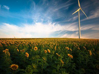 Energy statements image